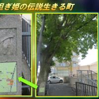 寝屋川市の民話 「鉢担ぎ姫の伝説生きる町」