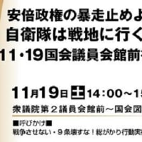 PKO新任務付与などの閣議決定糾弾11.19国会前行動
