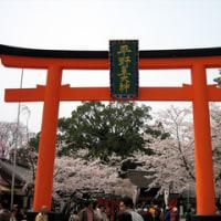 カレーうどん&平野神社