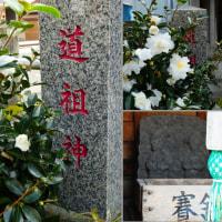 『山茶花』 道祖神