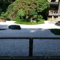秋の鎌倉散策🎵