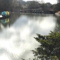 和気の池にて(2016_73)