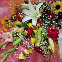 10月19日 明日の誕生花・ゆかりの花 花言葉は?(*^O^*)☆
