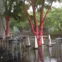 雨の日@新美