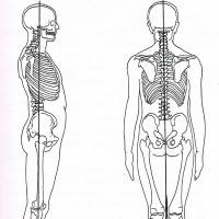 患者さんを立たせたまま治療する      金沢市    股関節   産後の腰痛