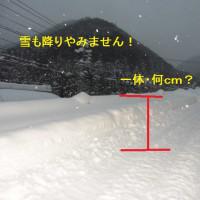 雪の回廊!あちら・こちら!! 大雪がもたらした影響