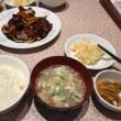 今日のお昼ご飯 三元豚と若鶏と黒酢定食