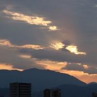 イカル、ジョウビタキ他、今日の雲
