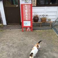白浜豆腐工房