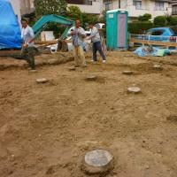 巣穴を掘り出したら踏み石になった