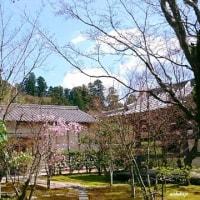 『山陽花の寺二十四か寺』~芳の国~Ⅱ