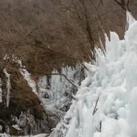 尾ノ内氷柱(埼玉・秩父)