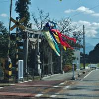 秋天突き抜けて爽やか、五色の幟はためいて・・・富山市水橋