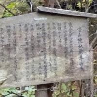 裏見の滝を見に・・イン日光  11/10誕生花・ブットレア