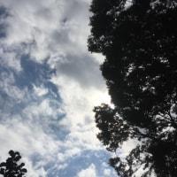 杉並区の空