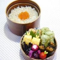 紅鮭昆布巻き弁当