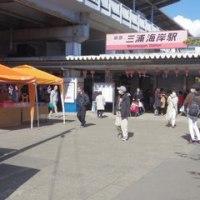 15th 三浦海岸桜まつり