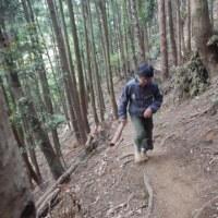 【トレラン記】5/3念仏山ハートアタック修行トレラン