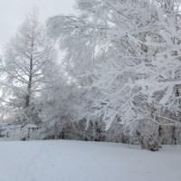 真冬並みの天気