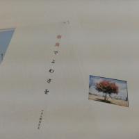 「奈良でよわさを」PDF版