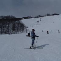 栂池高原スキー場に来ています。