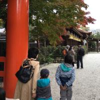 そして下鴨神社、糺の森