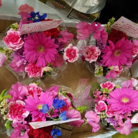 4月29日 明日の誕生花・ゆかりの花 花言葉は?(*^O^*)☆