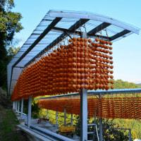 デジブック 『串柿の里の秋景』