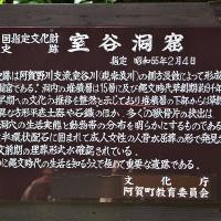 初夏の阿賀町散歩