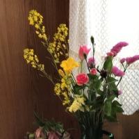 玄関に花の室礼。