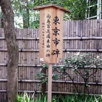 向島百花園(新梅屋敷)