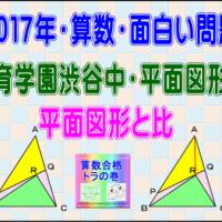 【う山TV】[渋谷教育学園渋谷中・平面図形][2017年・算数・面白い問題]その7