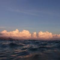 沖縄県瀬底島のサンゴの産卵観察(10日目)