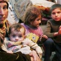 年末年始のお買い物が、パレスチナの子ども支援に✨ ✨ ✨