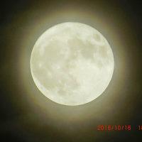 満月がきれいですよ~っ!