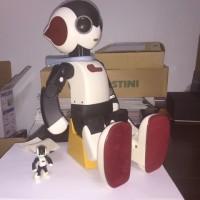 ロボットRobiの製作に挑戦 第8段階 完結編