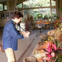 2006-10-28青葉の森03