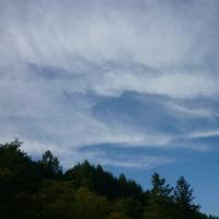写真でつづる、10月5日の北の森。。