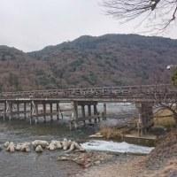大人の修学旅行4日目(渡月橋)