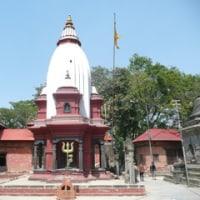 エベレスト街道トレック(22) カトマンズ(続)Everest Trail Trek (22) At Kathmandu (Cont'd)