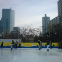 2年ぶりのスケート