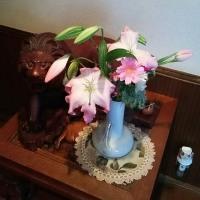 3/29ゆっくりして、ボトツクス注射、ケアマネ訪問の日(⌒‐⌒)