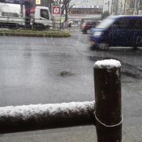 54年ぶりの雪