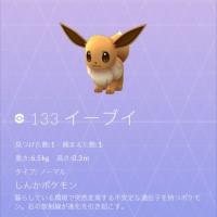 歩きスマホをしないでポケモンGO(Pokemon GO)を楽しもう!