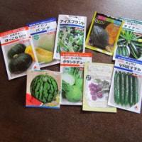 さあ!夏野菜の種を蒔くぞ~