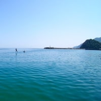 和田浜の無人島へ 2日連続で行ってきました!