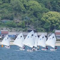 第65回赤穂市民総合体育祭ヨット競技大会のレース結果