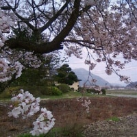 企画・提案・素案 南会津町へ 2016年12月初冬