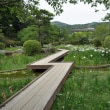 岩国吉香公園10(ヨシ)