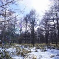北八ヶ岳・スノーシュー 2017.2.11